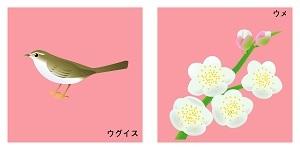 福岡県の鳥と花