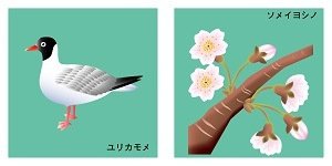 東京都の鳥と花