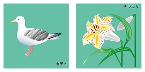 神奈川県の鳥と花