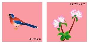 鹿児島県の鳥と花