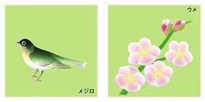 和歌山県の鳥と花