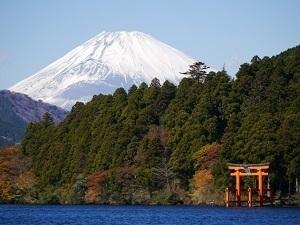 神奈川県の有名なもの2