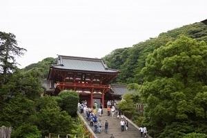 神奈川といえば2