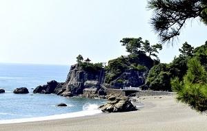 高知県の有名なもの6