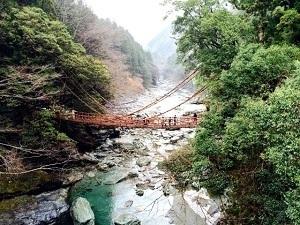 徳島県の有名なもの6