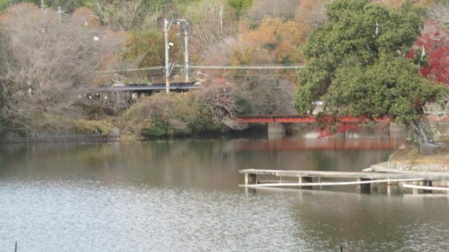 22019 6 9 湖水地方ウィンダミア