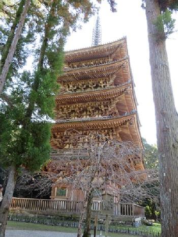 2017 11 13 京都 醍醐寺五重塔