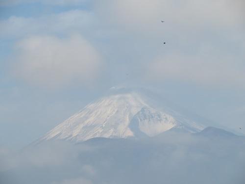 2019 2 6 富士山の見えるお部屋
