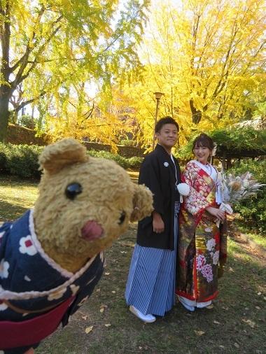 2020 12 2 三年坂の銀杏の木&花嫁・花婿さん&ベァー