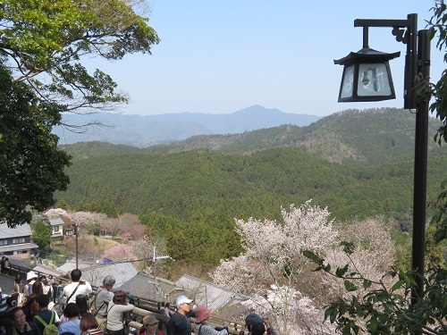 2019 4 7 国立公園 吉野山
