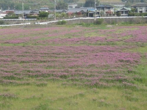 2019 4 21 天空の庭・高見の郷 JR和歌山線 車中より