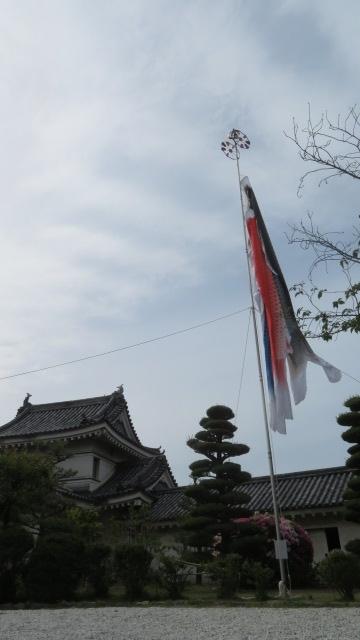 2021 4 23 お城(鯉のぼり)